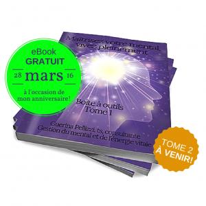 Maîtrisez votre mental, vivez pleinement - boîte à outils Tome 1 - Guerina Pellizzi