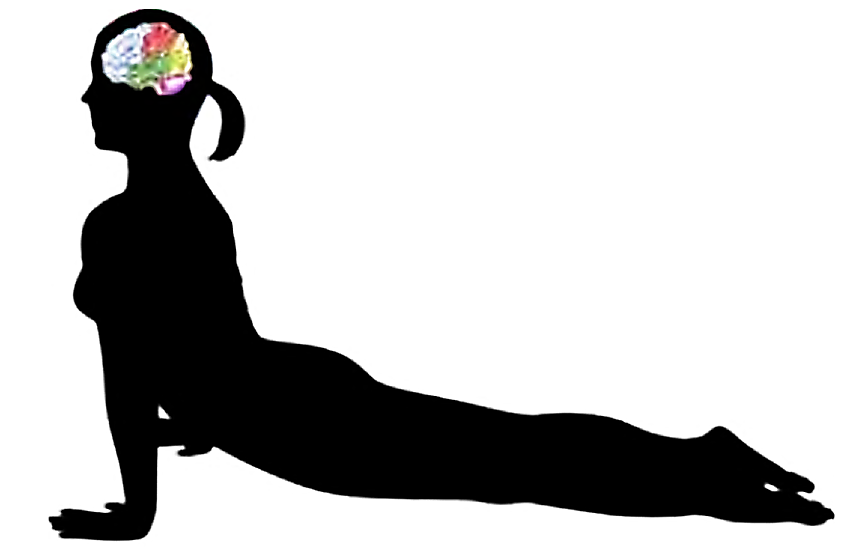 Guerina Pellizzi - Liens pertinents - Yoga: Changing The Brain's Stressful Habits
