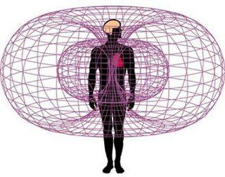 Guerina Pellizzi - Lien pertinent - Le coeur a un cerveau